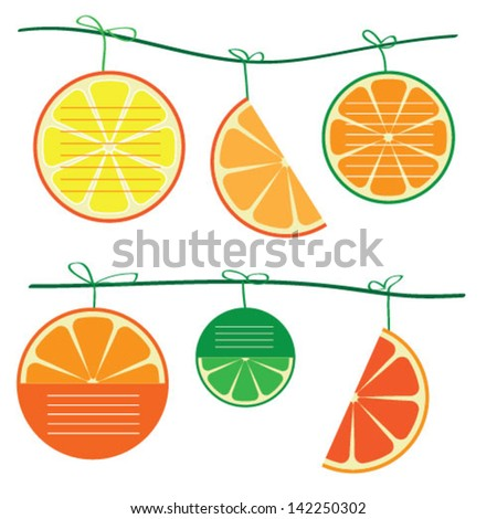 various orange fruit of note papers - stock vector