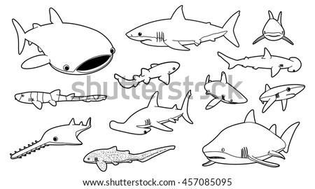 Various Sharks Cartoon Vector Illustration Monochrome