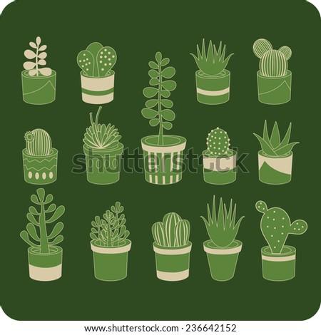 Various succulent flower mix green seamless  pattern - stock vector