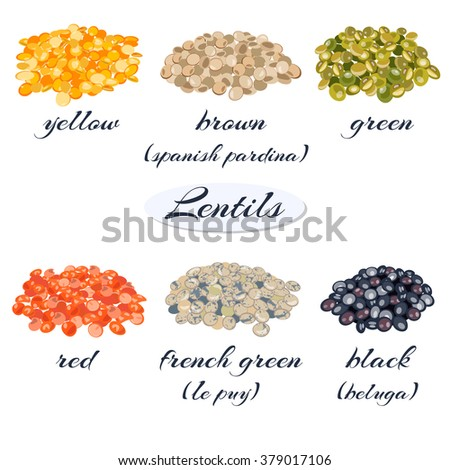 indian beans royalty free stock photos image 22520278