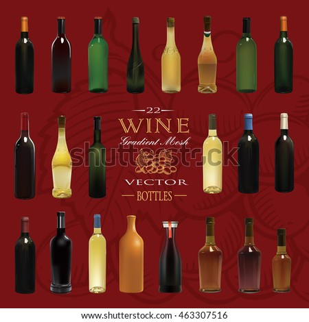 Various Types Of Wine Bottles. Vector Illustration