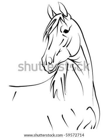 vecor horse - stock vector