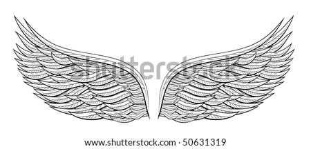 vector angel wings design - stock vector