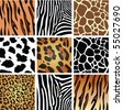 vector animal skin textures of tiger, zebra, giraffe, leopard and cow - stock photo