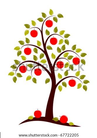 vector apple tree on white background - stock vector
