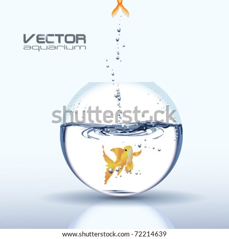 Vector Aquarium with Golden Carp - stock vector