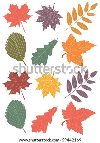 vector autumn leaves - stock vector