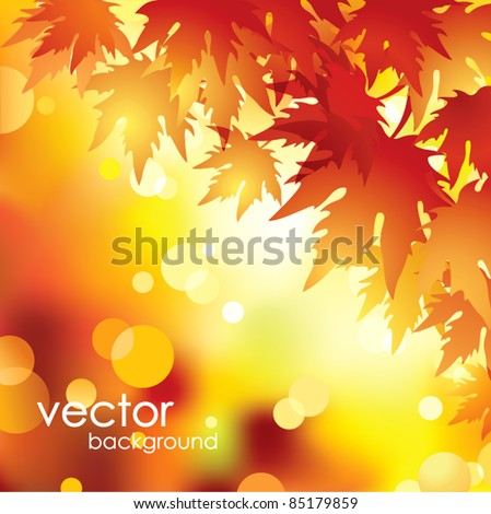 Vector autumn leaves background. - stock vector