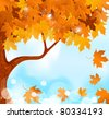 vector autumn tree maple leaves against the blue, bright sky - stock photo