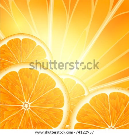 Vector background for design with fruits of an orange - stock vector