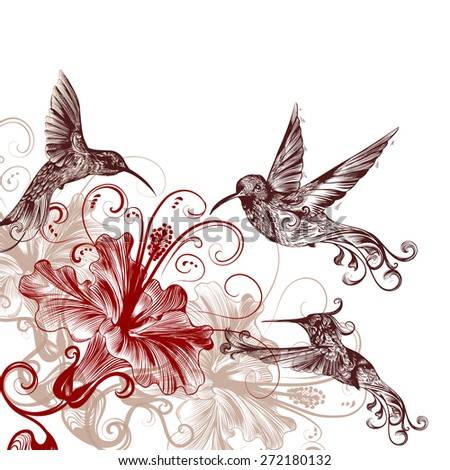 Vector background with birds and hibiscus for design - stock vector