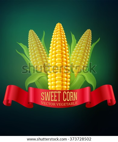 vector background with  cobs of corn and red ribbon - stock vector