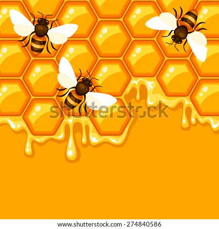 Vector background with honeycomb and bees