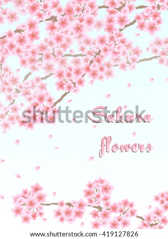 Vector background with sakura branches with pink flowers and falling petals - stock vector