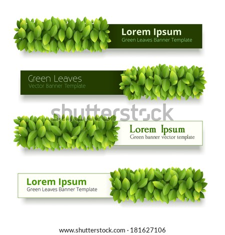 Vector banner of green leaves with titles on white background - stock vector