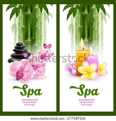 Vector banners on spa theme with bamboo, massage stone, frangipani, candles and orchids - stock vector