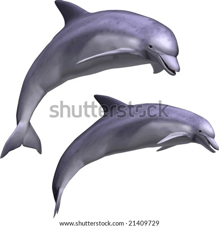 VECTOR: Beautiful dolphin leaping - stock vector