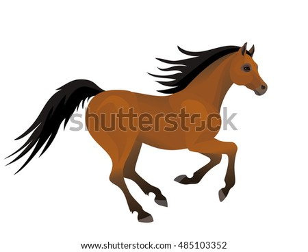 Vector beautiful running arabian horse on white background