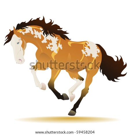 Vector beautiful running buckskin paint horse on a white background - stock vector