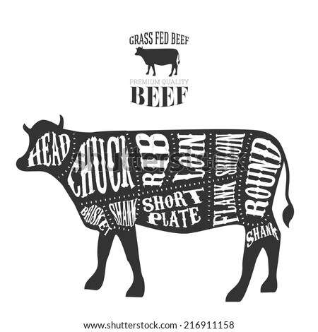 Vector Beef Cuts Diagram Vintage Style Stock Vector 216911158