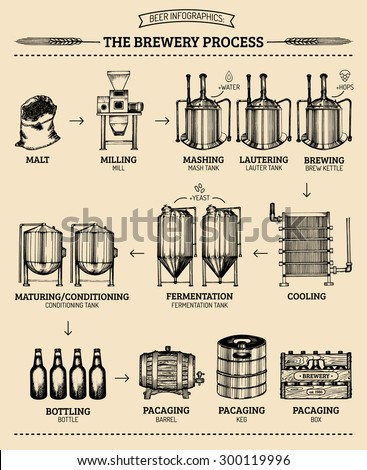Vector beer infographics with illustrations of brewery process. Brewery infographics design. Beer process hand sketched illustrations.Beer process with brewery elements.Old brewery.Beer bar.Craft beer - stock vector