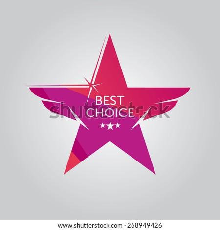 Vector Best Choice Star Logotype - stock vector