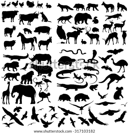 Vector Big Set of Animals Silhouettes. Mammals, Reptiles, Amphibia, Birds, Bats and other. - stock vector