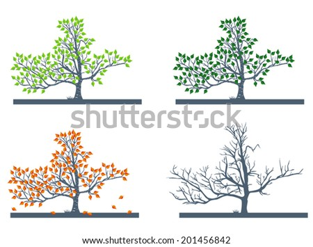 Vector birch tree in different seasons