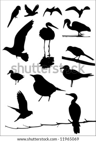 vector bird silhouette pack 2