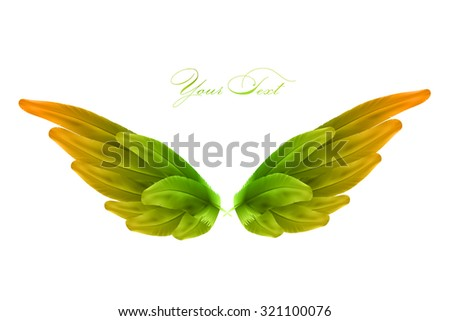 vector bird wings - stock vector