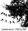 vector birds on wire and  a tree - stock vector