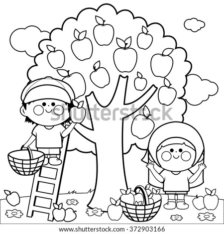 Vector black and white Illustration of two children, a boy and a girl picking apples under a tree. - stock vector