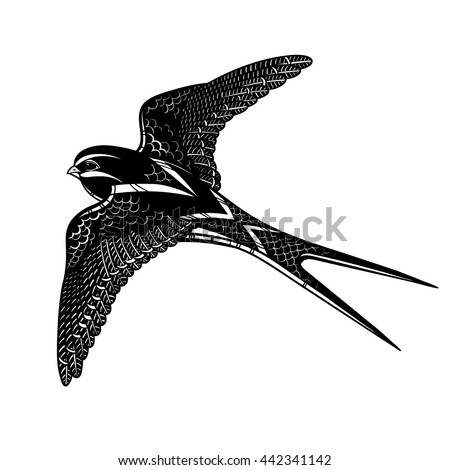 Vector Black and White Tattoo Swallow Illustration