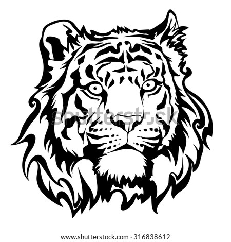 vector black and white tiger head, illustration for design predator - stock vector