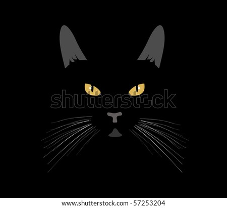 Vector. Black cat in the night - stock vector