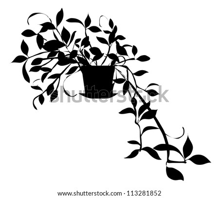 Vector Black Silhouette of House Plant Isolated on White Background - stock vector