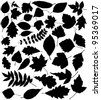 vector black silhouettes of leaves - stock vector