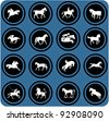vector blue  signs. Horse riders silhouettes.  Horse icons. - stock vector