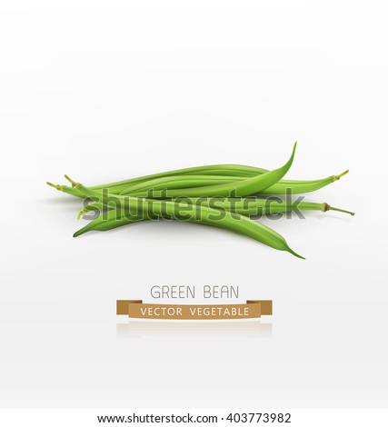 vector bunch of green beans isolated on white background - stock vector
