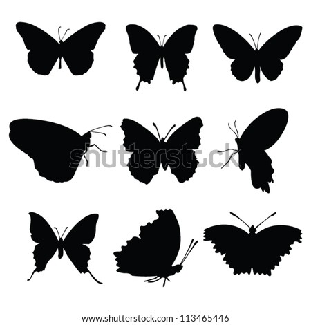 Vector butterflies collection black silhouettes on white background - stock vector