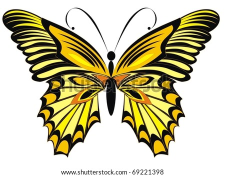 Vector butterfly isolated on a white background - stock vector