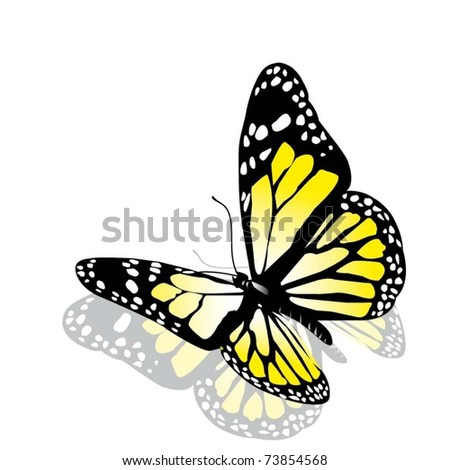 vector butterfly of yellow color