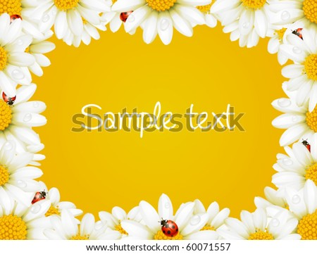 Vector camomile frame and ladybugs - stock vector