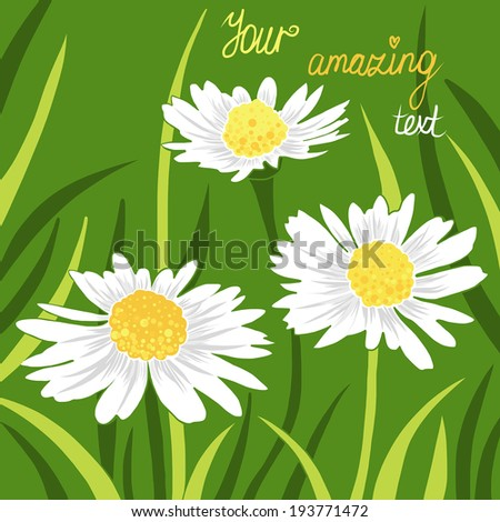 Vector card with daisies - stock vector