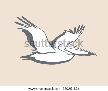Vector card with graceful flying pelican. Sweet pelican character, beautiful design elements. - stock vector