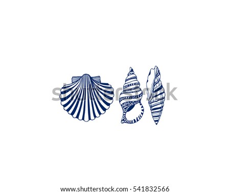 Vector card with hand drawn seashells. Beautiful marine design elements.