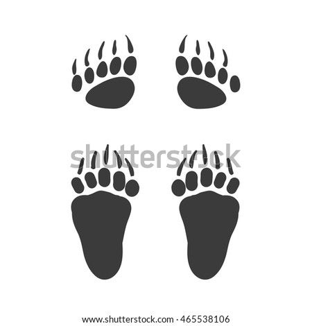 Bear paw stock images royalty free images vectors for Bear footprints template
