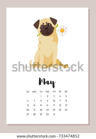 Vector cartoon style illustration of May pug dog 2018 year calendar page. Isolated on white background. Template for print.