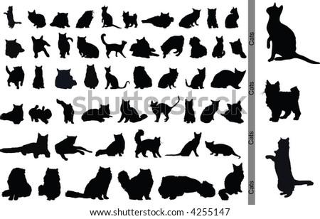 Vector Cats - stock vector