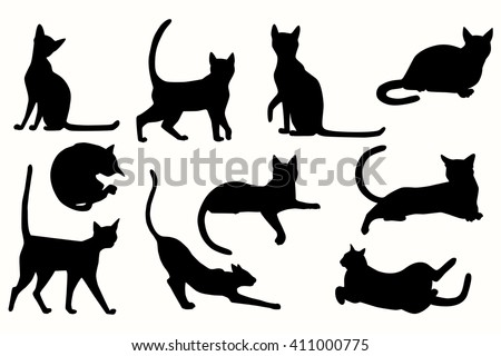 vector cats silhouette cats various poses stock vector